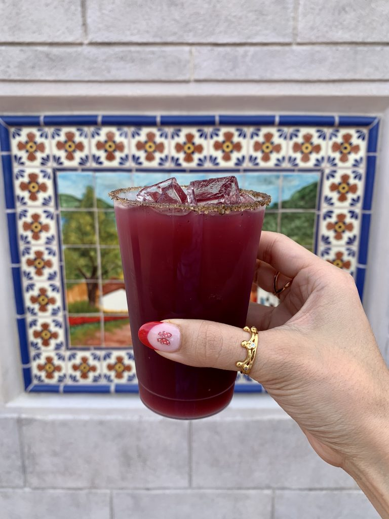 Disney Diego Blackberry Margarita